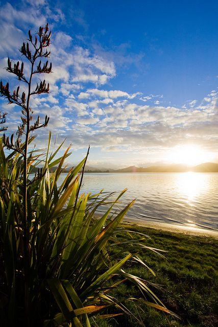 Tairua Estuary - Waikato, New Zealand