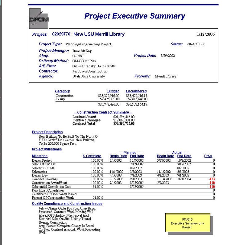 Executive Summary Report Template Executive Summary Template