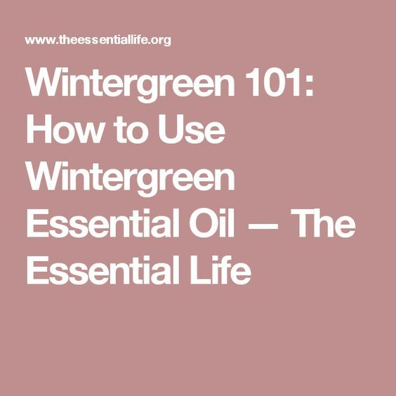 Wintergreen 101: How to Use Wintergreen Essential Oil — The Essential Life