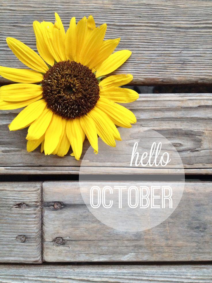 30 Best October Images On Pinterest Hello October