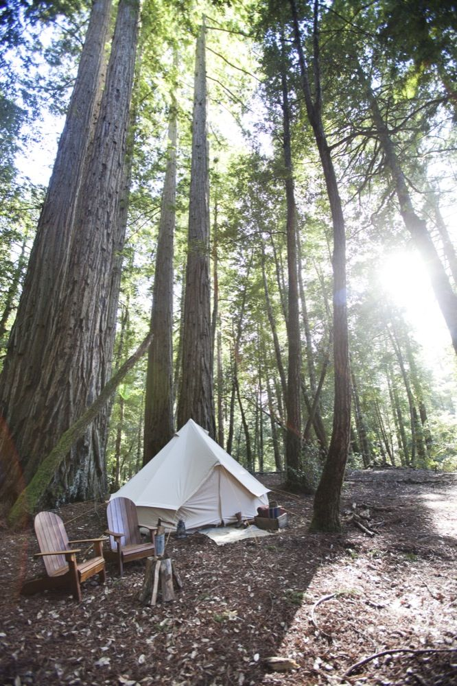 Shelter Co. Glamping