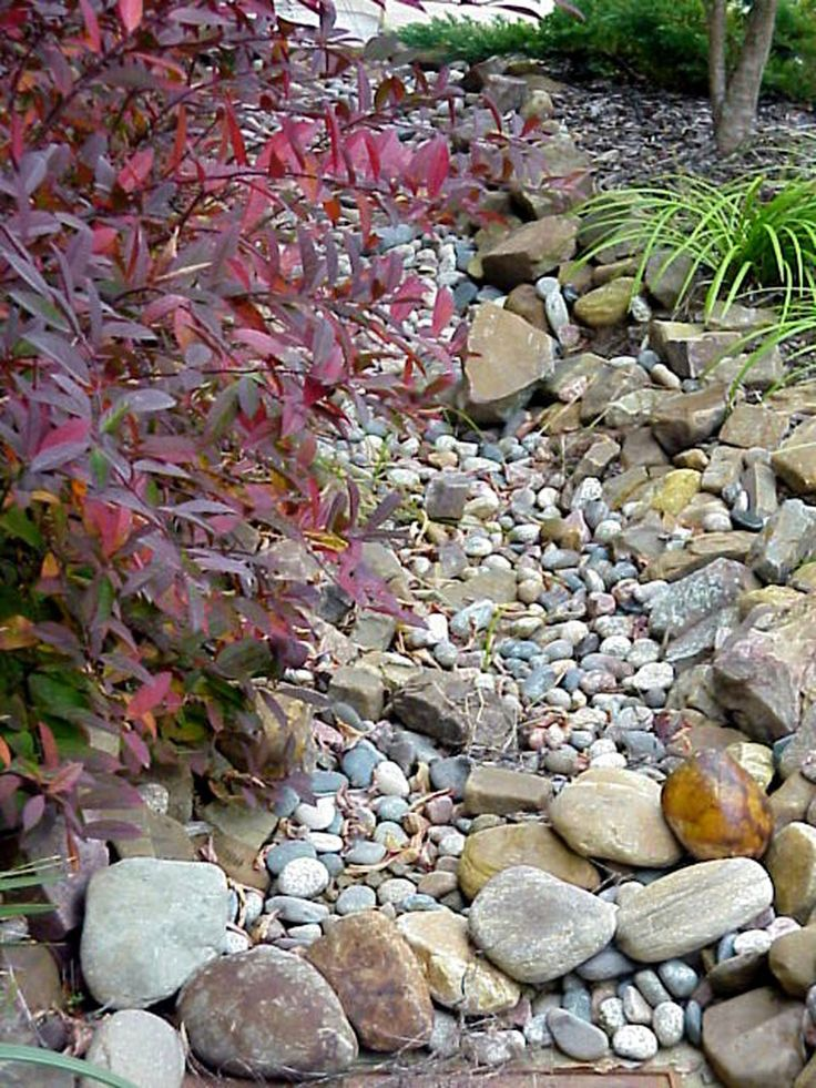 160 Best Japanese Garden Images On Pinterest   Japanese Gardens, Zen Gardens  And Gardens