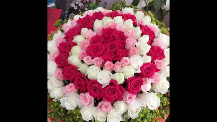 Order flowers online to Huangshan China. Our website is www.chinaflower815.com  Online flowers delivery really helped us a lot in modern society.  Huangshan flowers shop, send flowers to Huangshan, Huangshan flowers delivery, China Huangshan flowers shop delivery, order flowers to Huangshan China, Anhui Huangshan flowers shop, Huangshan flower delivery, Huangshan flower shop, how to send flowers to Huangshan Anhui China