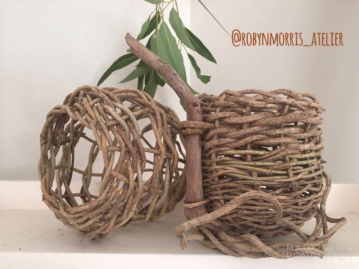Wild vine weaving by  Robyn morris