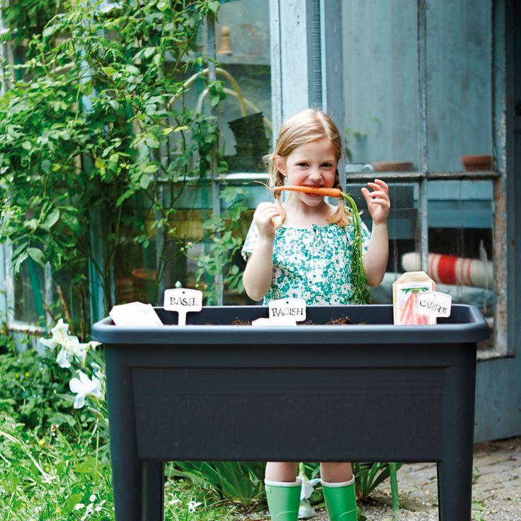 warzywnik green basic grow table xxl warzywnik-elho-makeithome-2 | grow table for home, garden, terrace, eko, green, food, vegetables, own