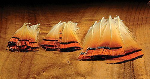 Hareline Golden Pheasant Tippets  http://fishingrodsreelsandgear.com/product/hareline-golden-pheasant-tippets/  10 per package Great for tails Perfect for Atlantic Salmon flies