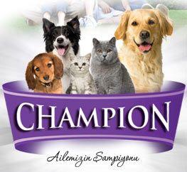 Champion Köpek Maması