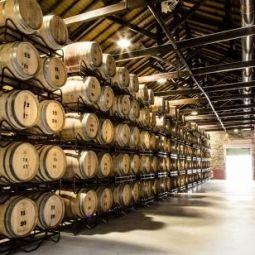Galicië ligt in het uiterste noordwesten van Spanje, aan de Atlantische Oceaan en is één van de mooiste gebieden van het groene Spanje. Als wijngebied is het vooral bekend door de #RíasBaixas wijn van de #Albariño druif. Deze wijnstreek loopt eigenlijk over in de #VinhoVerde regio in #Portugal. #wijnrondreis #wijnproeven #vakantie #Spanje #wijn