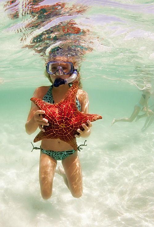 mermaids-in-the-sun