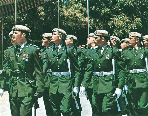 Rhodesians