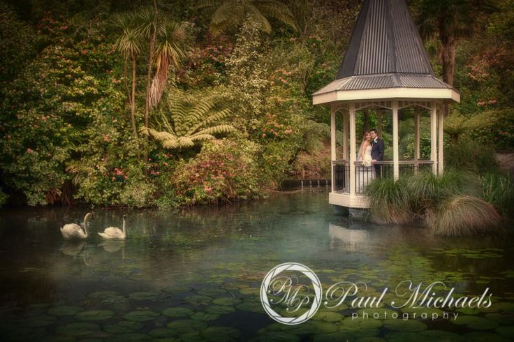 Wedding romance at Wellington botanical gardens. New Zealand wedding photography http://www.paulmichaels.co.nz/ PaulMichaels Wellington photographers.