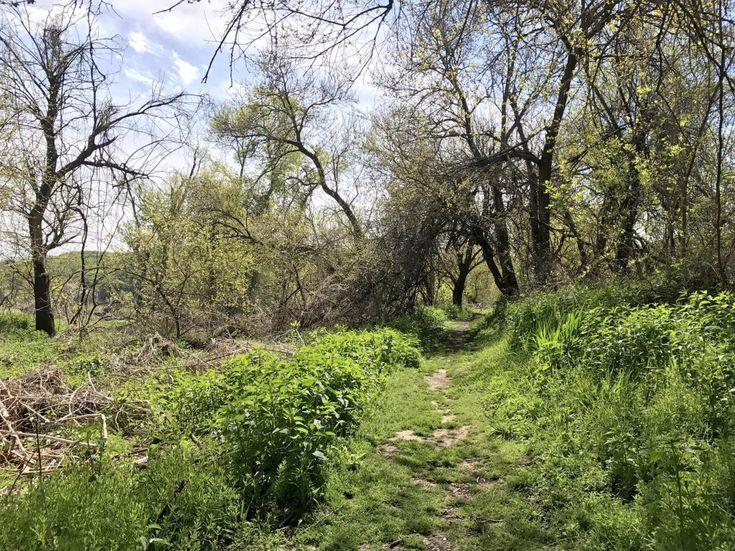 Fontenelle Forest in Bellevue, Nebraska