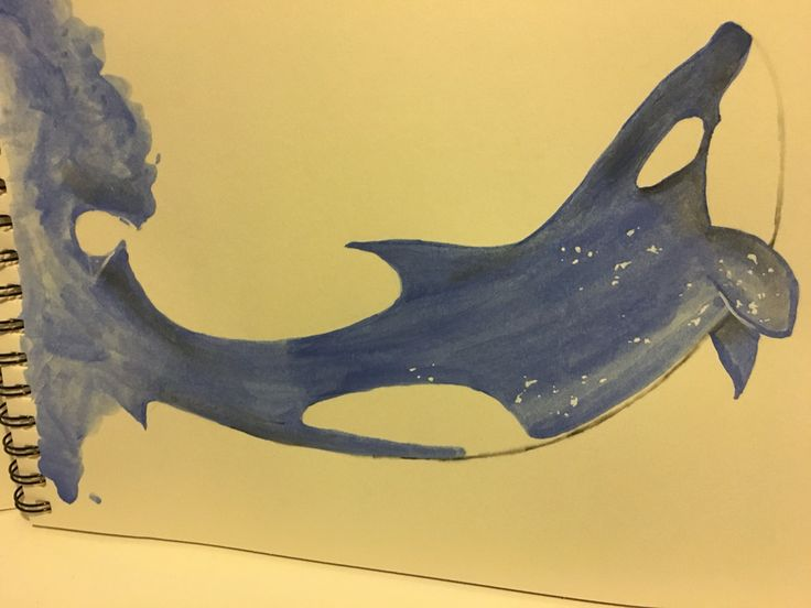 My daughter painted this awesome whale!