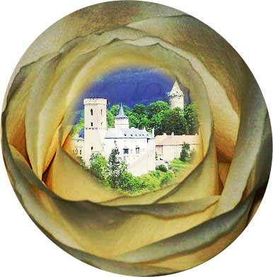 Zuid Bohemen in Tsjechie is lange tijd het domein geweest van de Heren van de Roos. Getuigen zijn nog het Kasteel Rosenberg of Rozmberk in Rozmberk, maar ook het Kasteel van Cesky Krumlov. Hun embleem : kleurige roos op een zilveren veld ......