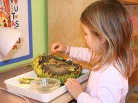 Montessori Kinderhaus Wien - Paedagogik