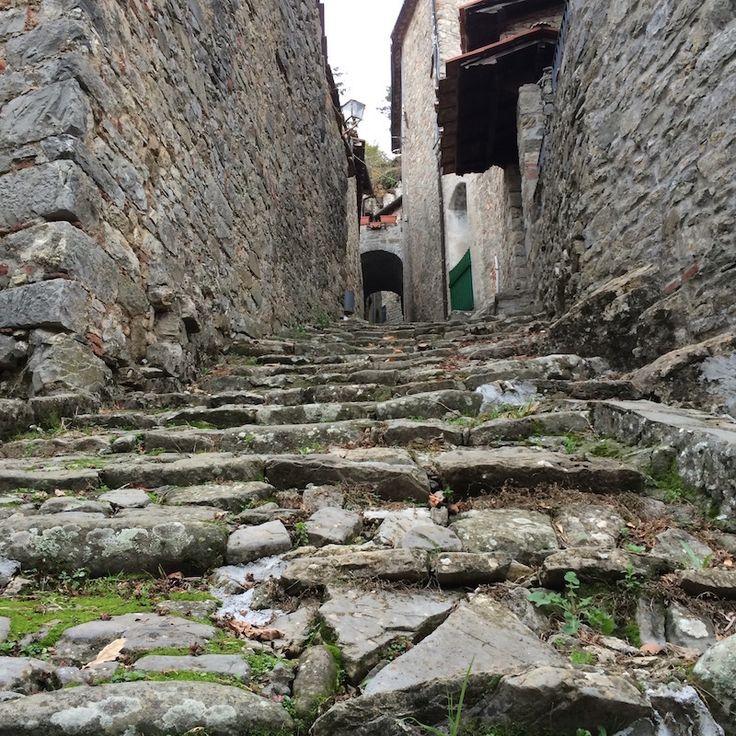 Cobblestone steps in the quaint town of Colognora