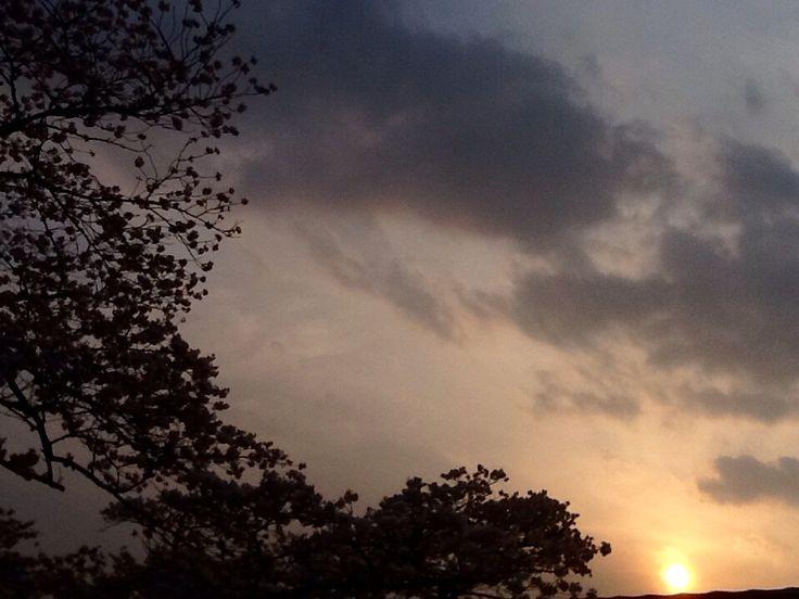 Sunset in Spring2