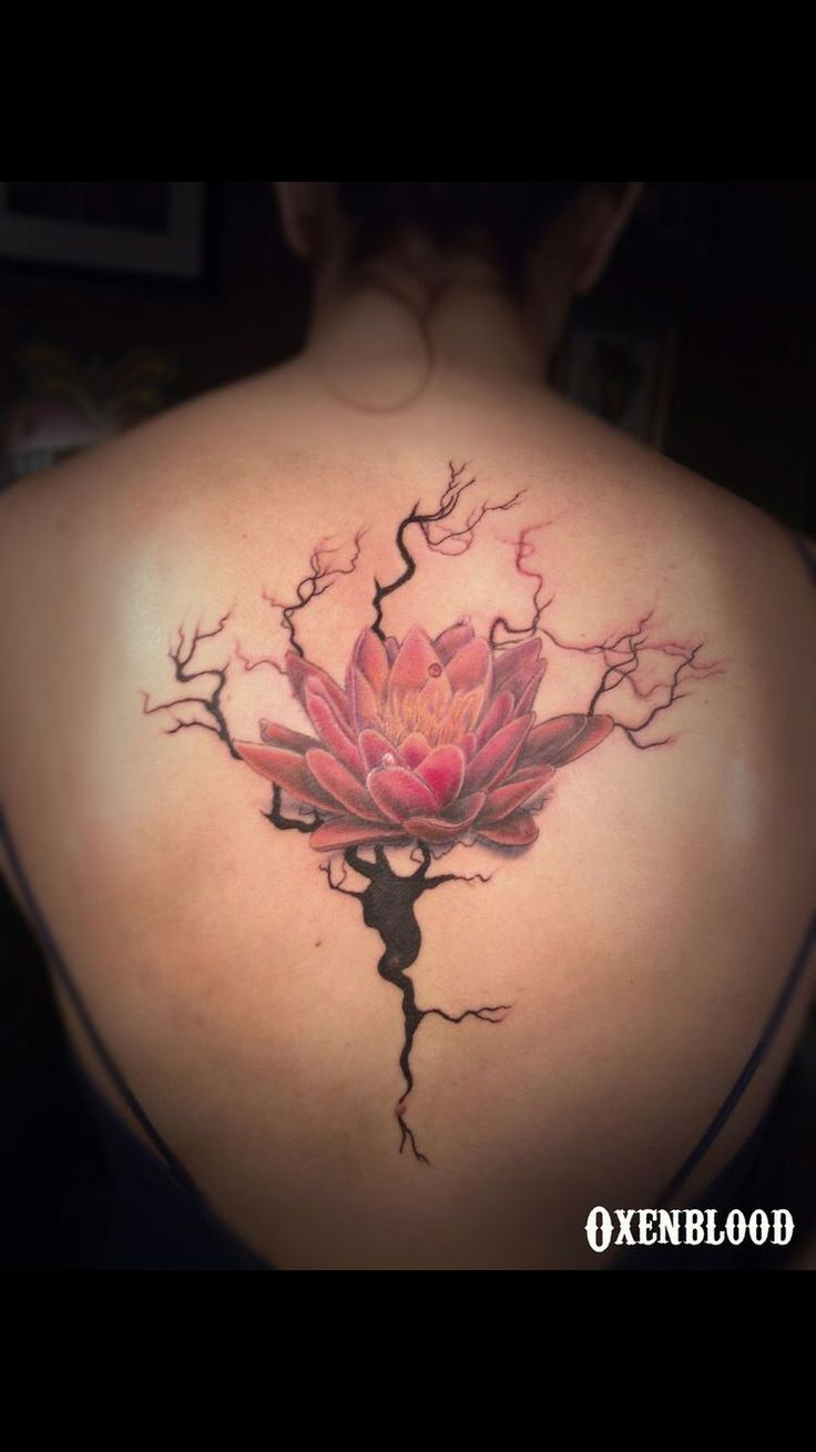 Evil tattoo kalisz piercing - Neuron With A Lotus I Think I D Rather Do Cherry Blossoms