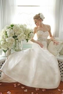 Victoria Nicole Wedding Gowns