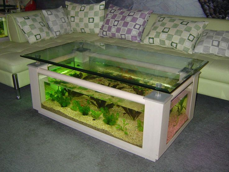 Awesome Unique Aquarium Design ~ http://www.lookmyhomes.com/pick-one-of-unique-aquariums-design-ideas-for-your-fish/