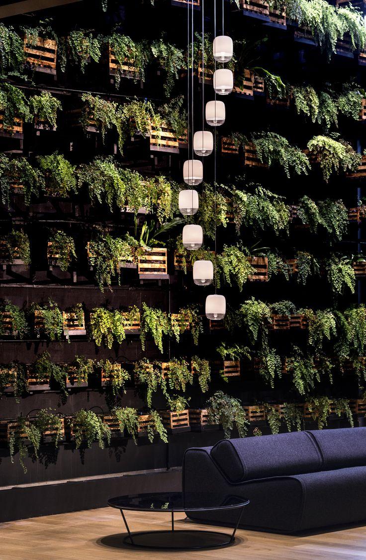 Living PLant Walls by RealPalmTrees - #LivingWalls #PlantWalls #CoolWall #HomeDIY #Ferns #RealPalmTrees realpalmtrees.com