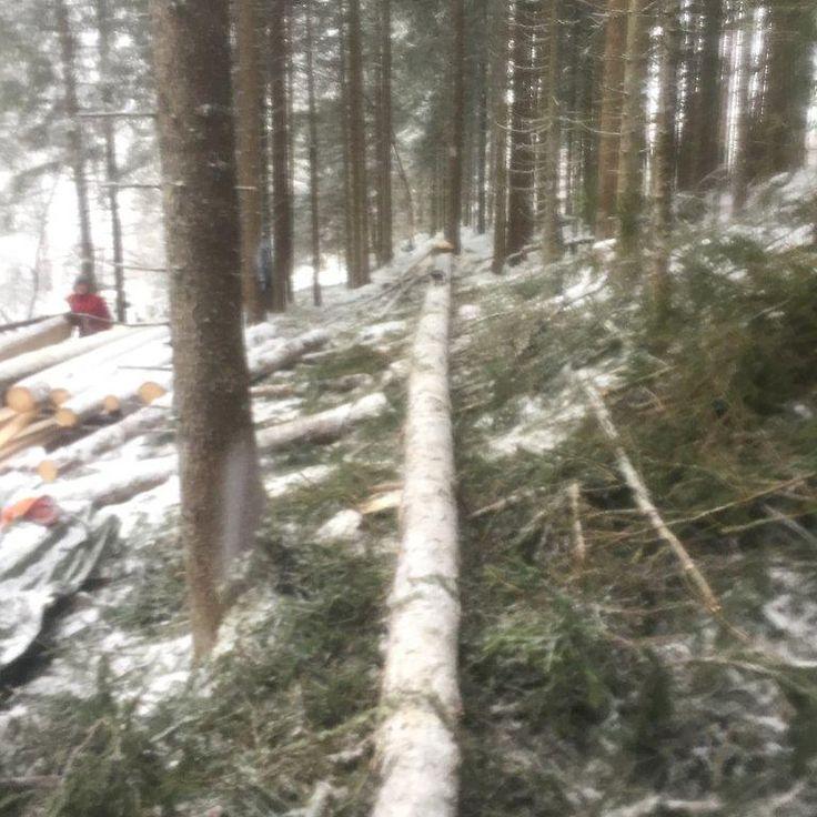 """0 likerklikk, 1 kommentarer – Arild (@a_tuxen) på Instagram: """"#woodenframe #grindbygg #stavbygg #vikings Heimastølen i Bø, Vik i Sogn"""""""