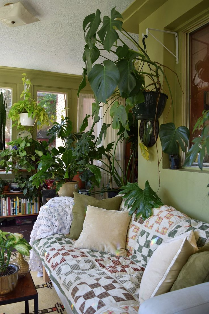 Natasha and the Plant-Filled Sunroom | Sunroom and Plants
