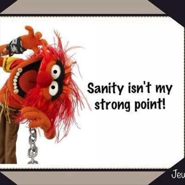 Funny Muppet Meme: 48 Best Animal (muppet ) Quotes Images On Pinterest