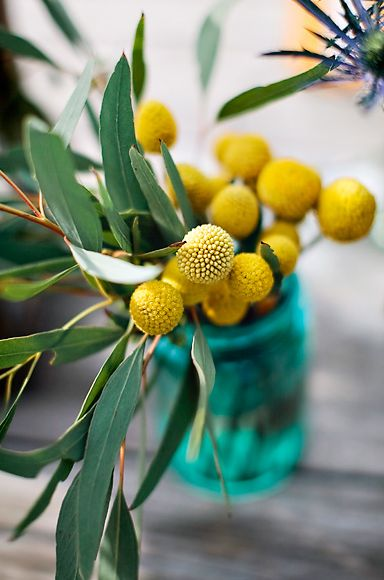Did we say we love Billy Buttons! | www.giftlocal.ly