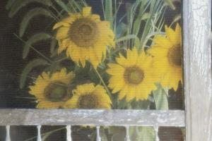 Add art to a screen door with paint.