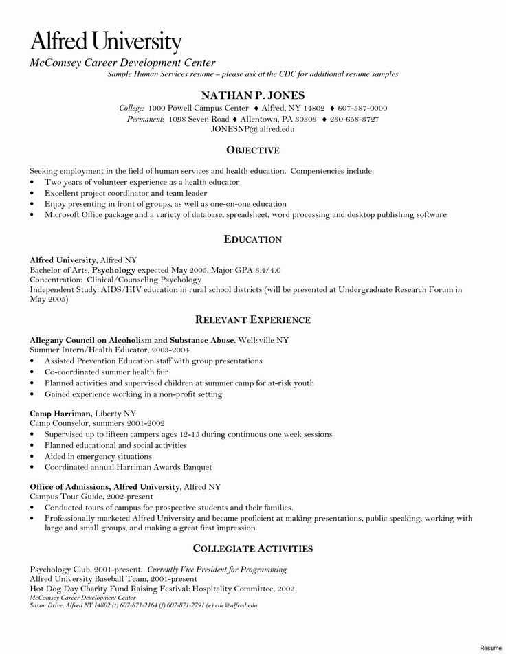it auditor resume sample in 2020 (With images) Resume