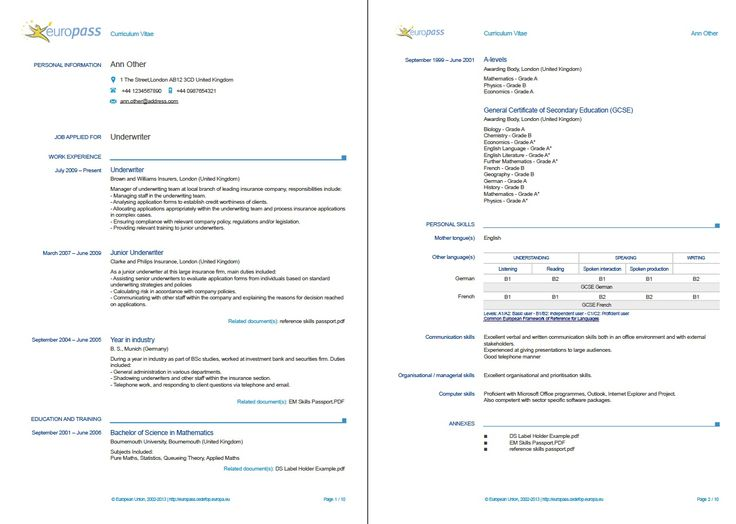 example of a europass cv  more examples       europass cedefop europa eu  en  documents