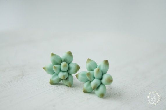 Blue Green Succulent Planter Stud Earrings small hypoallergenic studs earstuds succulent plants jewelry valentine's mother's day gifts