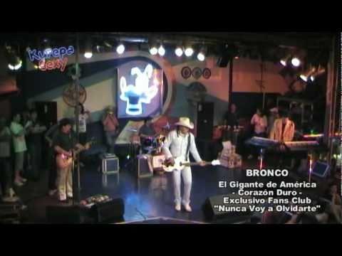BRONCO - Amigo Bronco En Vivo En La Plaza Mexico 1994 - YouTube