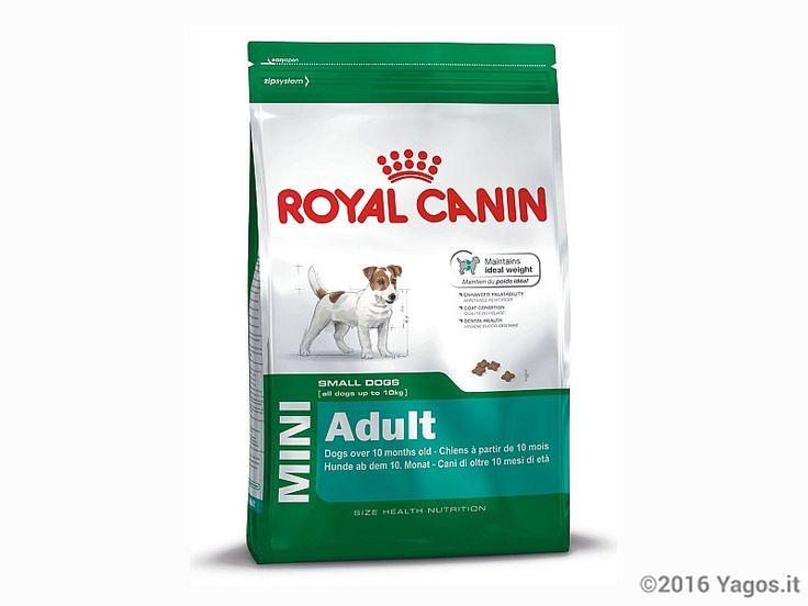 Alimento per cani Mini Adult  ROYAL CANIN