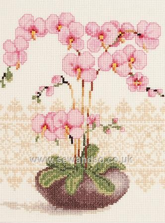 Buy+Pink+Orchid+Cross+Stitch+Kit+Online+at+www.sewandso.co.uk