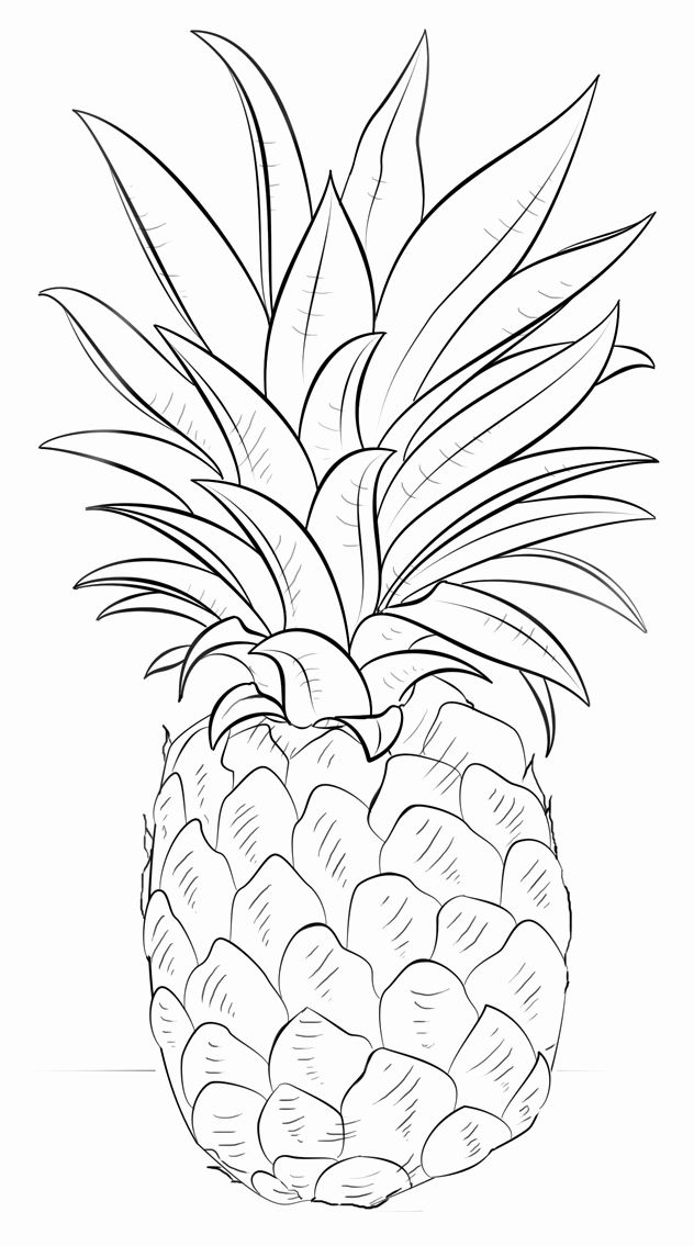 Cute Pineapple Coloring Page Best Of Pineapple Coloring Pages To