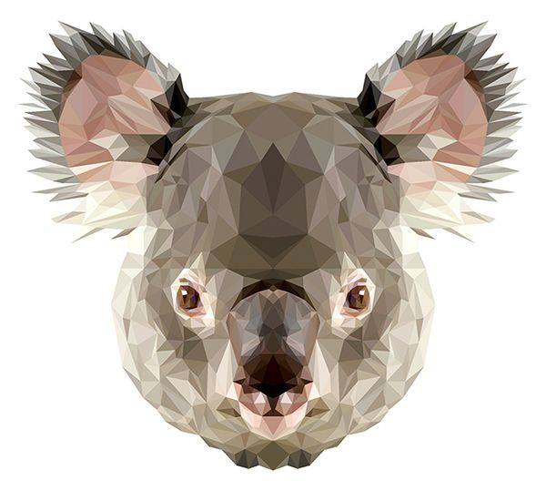 a research for animal face