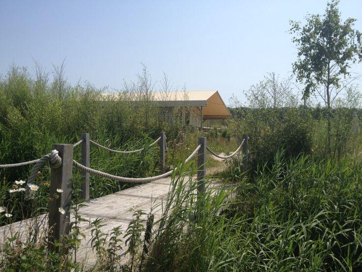 LODGE:Tussen het bamboe, vlakbij de Pitch&Putt Golfbaan staat de Lodge. Een locatie met een gezellige veranda en eigen terras, geschikt voor een BBQ. Je kan gebruik maken van de sanitaire voorzieningen in het strandpaviljoen (loopafstand ±100m)