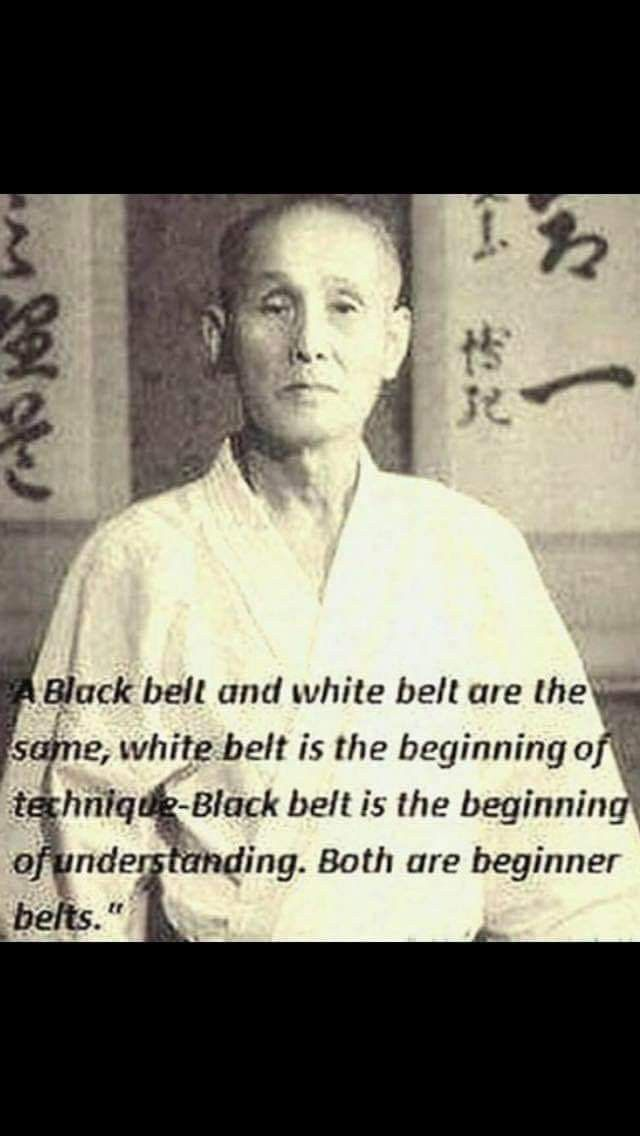 Pin By Rose Steinke On Martial Arts Martial Arts Aikido Black Belt