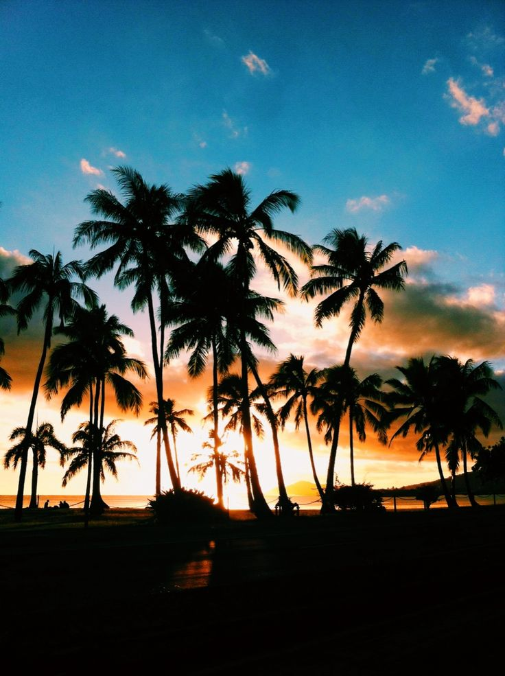 Happy Thursday! I hope you have a wonderful day!! #newday  (pictured: Hawaii @ sunset)