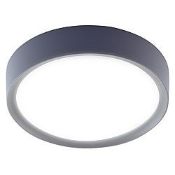 Ruth Grey with Frosted Glass Bathroom Ceiling Light £16.98