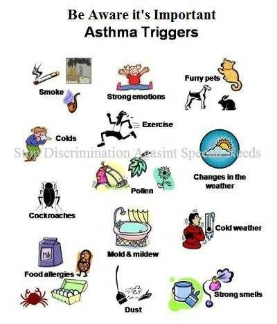 Allergy asthma respiratory long beach