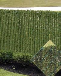 Privacy Slats For Chain Link Fences It Looks Like Green