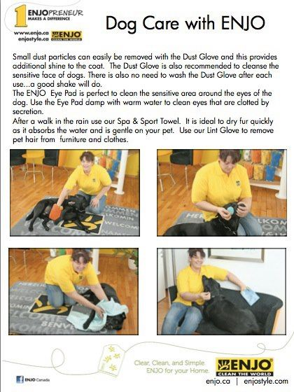 Dog Care with ENJO pg 2