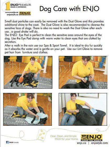 Dog Care with ENJO pg 2