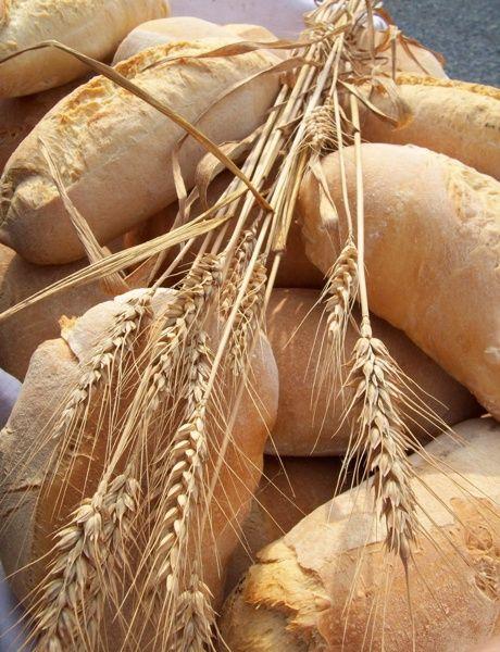 Bread #food #piemonte #italy #provinciadicuneo