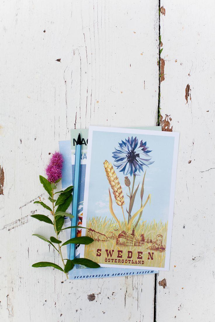 Vår vackra blåklint. Design by Inga-Greta Solbreck-Möller