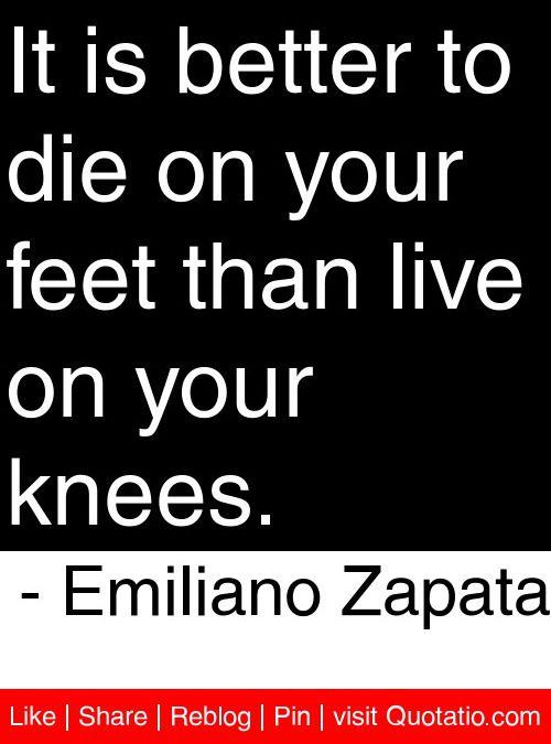 Pride Quotes Beauteous 12 Best Latin Pride Quotes Images On Pinterest  Qoutes Quotations . Inspiration Design