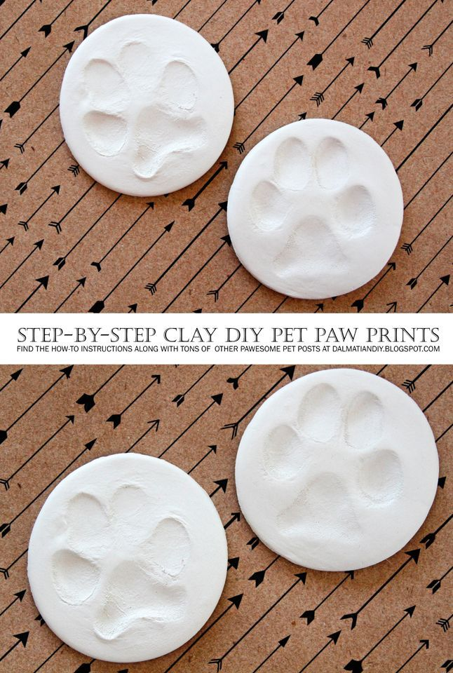 6b9baa7832e5 DIY Dog (or Cat) Clay Paw Prints - Simple step-by-step how-to instructions  with photos + finishing tips.